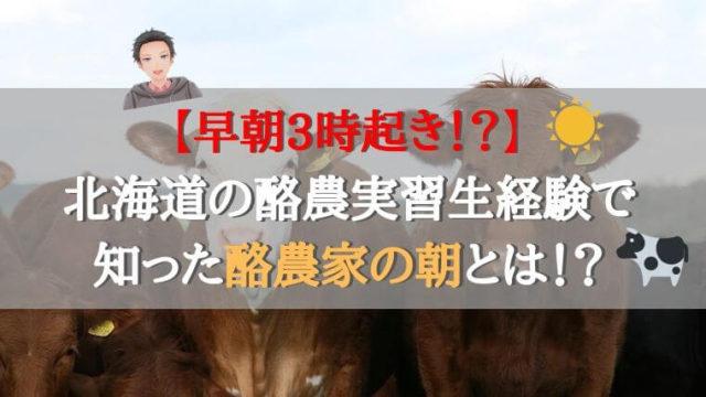 まとめ:早朝から行う酪農業も魅力がたっぷり!