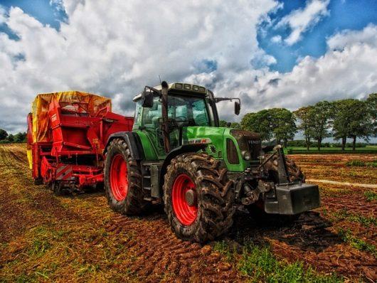 新規就農には研修期間が存在する