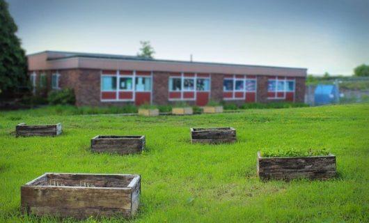 農業小学校は大人の教育にも繋がる!
