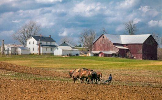 田舎でスローライフを行うことでの「メリット・デメリット」